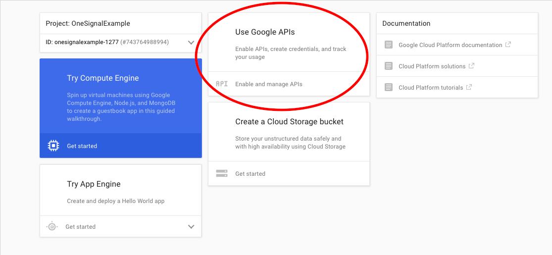 enable_google_api