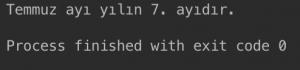 Java Switch Case - 2