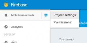 firebase konsol project setting