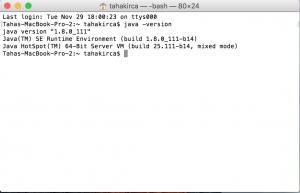 java version terminal
