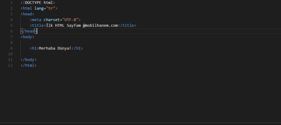 Html kod örneği