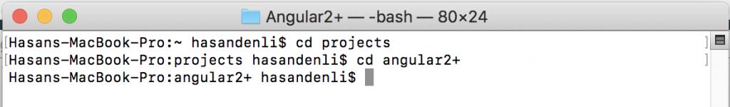 angular proje kurulumu için ilk adım