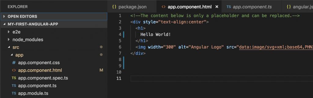 angular proje setup
