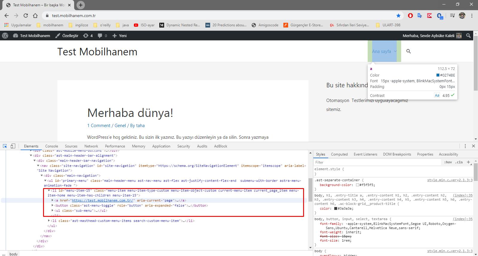 Selenium API ve Obje Hareketleri